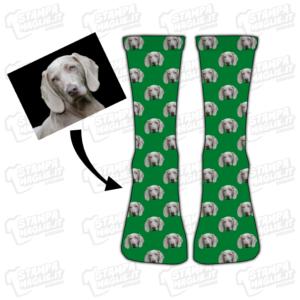 calzini cane